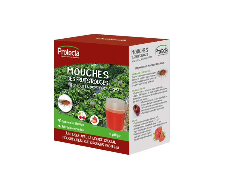 EQ-PIE-03084-mouches-des-fruits-rouges